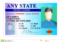 12 Free Drivers License Template Photoshop | Proposal Resume in Florida Id Card Template