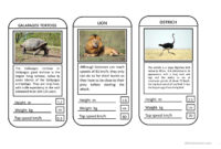 Animal Top Trumps Game – English Esl Powerpoints in Top Trump Card Template