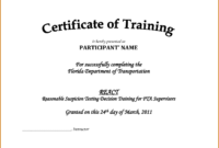 Army Certificate Of Training Template | Doyadoyasamos intended for Army Certificate Of Completion Template