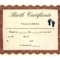 Birth Certificate Template | Printable Baby Birth Intended For Baby Doll Birth Certificate Template