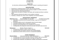Combination Resume Template Word Free Samples Examples throughout Combination Resume Template Word