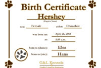 Dog Birth Certificate Template Puppy Birth Certificates regarding Birth Certificate Templates For Word