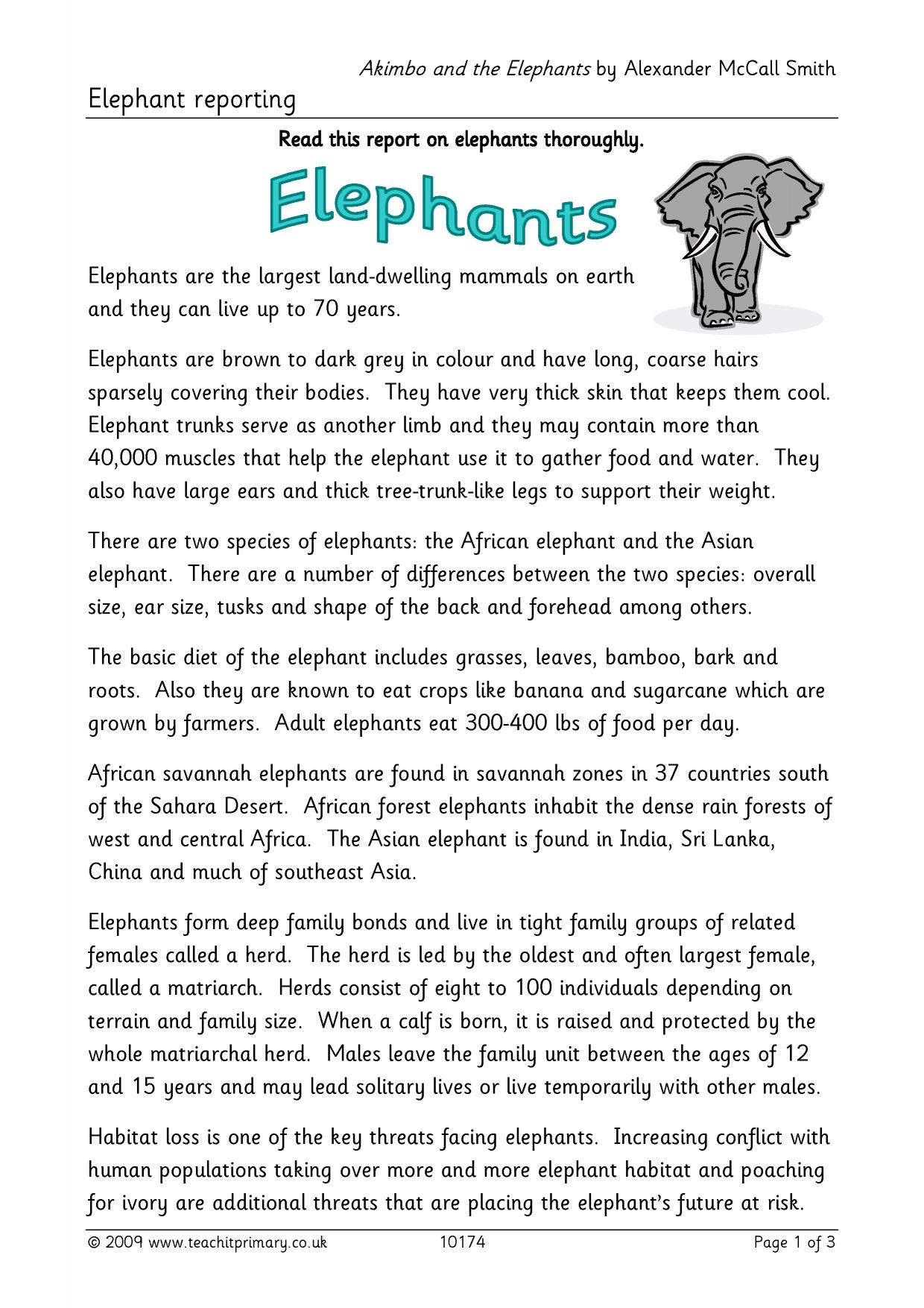 Elephant Report Writing Throughout Report Writing Template Ks1