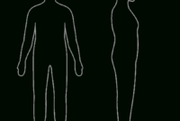 Free Body Outline, Download Free Clip Art, Free Clip Art On with regard to Blank Body Map Template