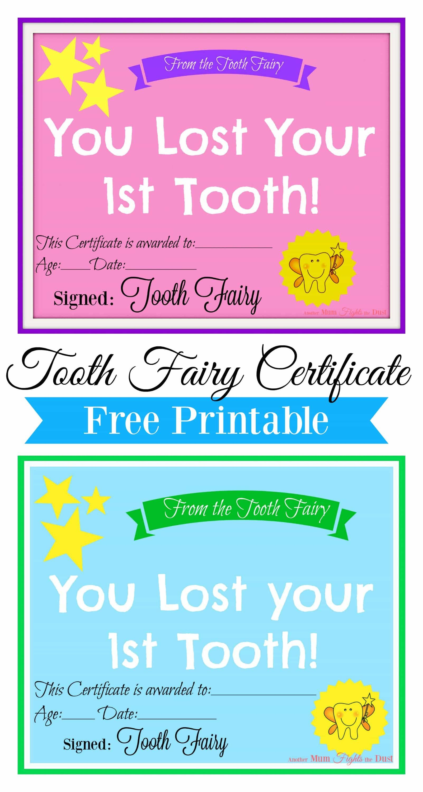 Free Printable Tooth Fairy Certificate   Tooth Fairy Ideas In Free Tooth Fairy Certificate Template