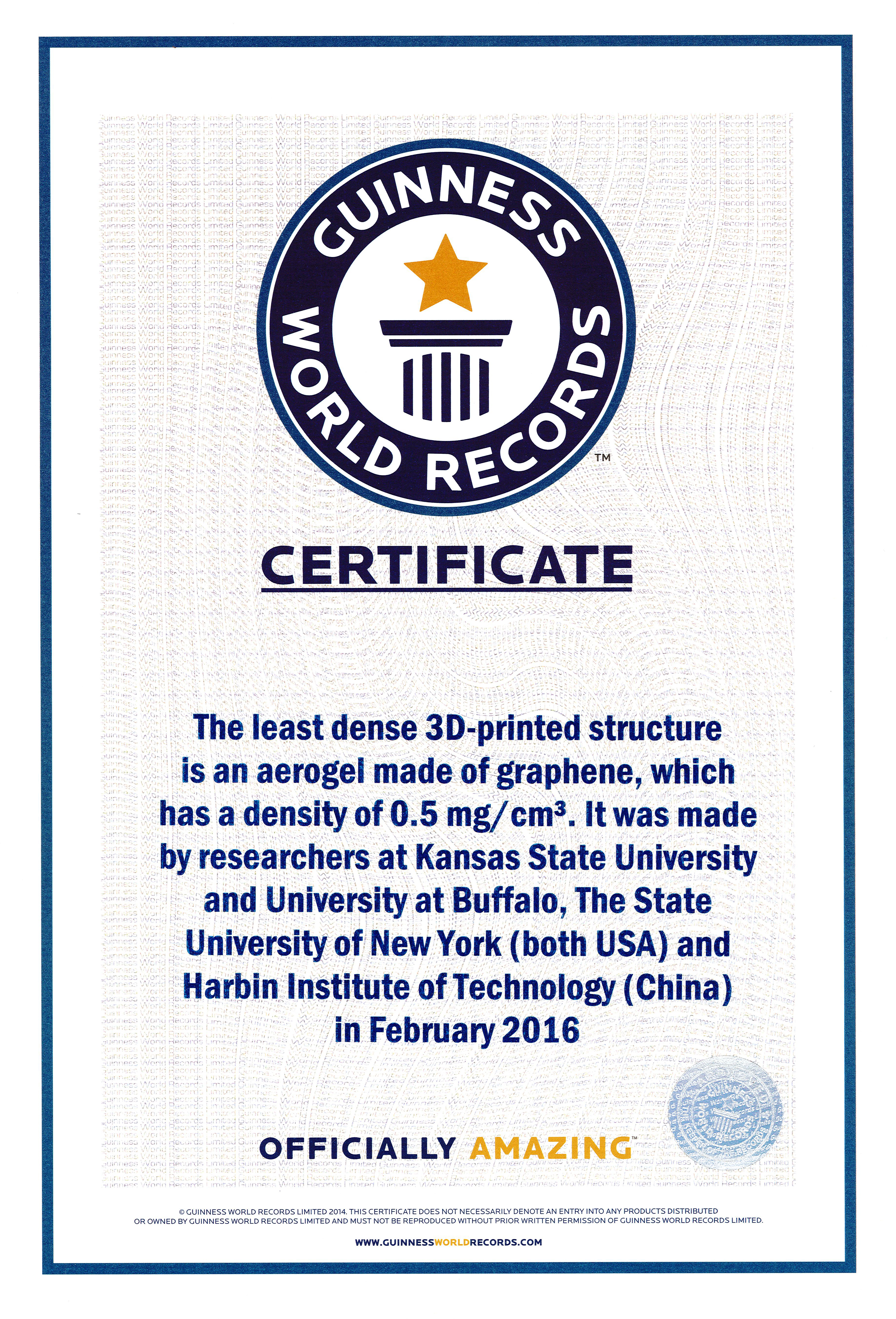 Guinness World Record Certificate Template - Corto Pertaining To Guinness World Record Certificate Template