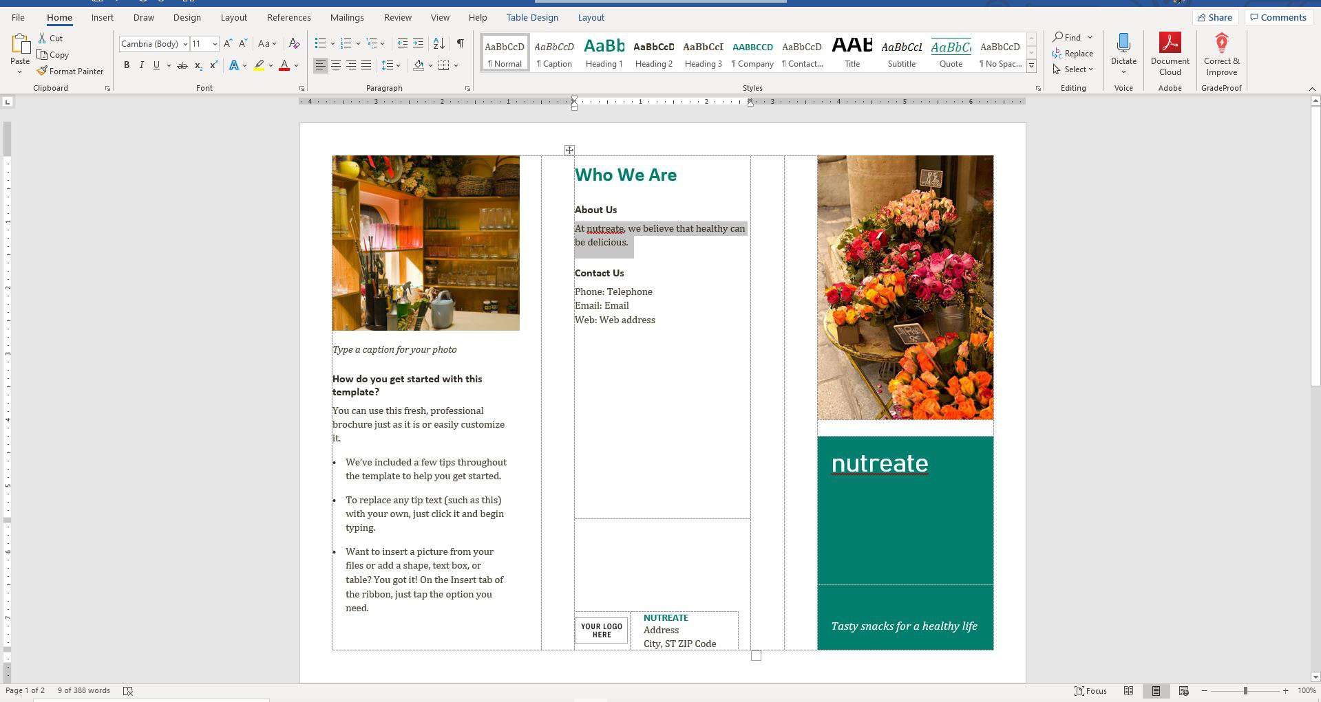 brochure template on microsoft word