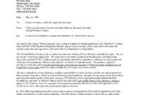 Mietschuldenfreiheitsbescheinigung Vorlage Luxury Luxury regarding Agreed Upon Procedures Report Template