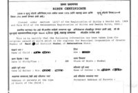 Procedure To Get Birth Certificate From Bmc (Mcgm) Mumbai With Baby Death Certificate Template