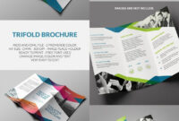Singular Indesign Brochure Templates Free Download Template in Adobe Indesign Tri Fold Brochure Template