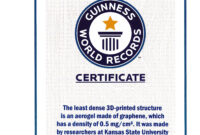 World Record Certificate Template – Thenerveonline Throughout Guinness World Record Certificate Template