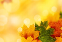 Yellow Autumn Backgrounds For Powerpoint – Nature Ppt Templates Intended For Free Fall Powerpoint Templates